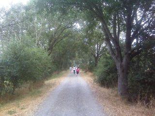 SantaRosamarathon